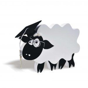 SHEEP STUDENT